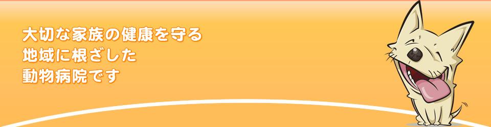 奈良県桜井市の動物病院・おかだペットクリニック(岡田ペットクリニック)