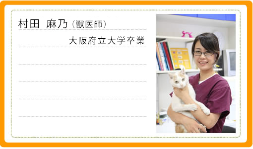 獣医師1・村田麻乃